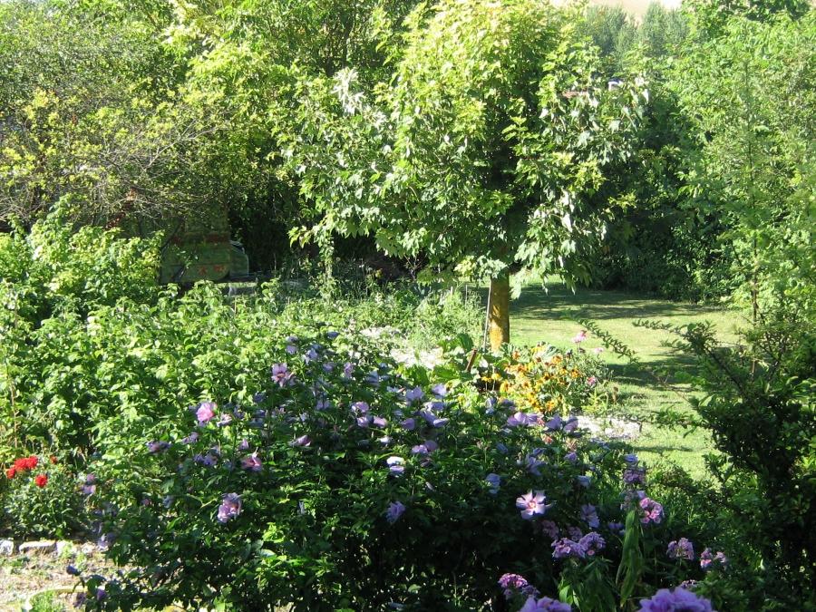 Exterieur et jardins colombages champenois 10 aube for Jardin et exterieur